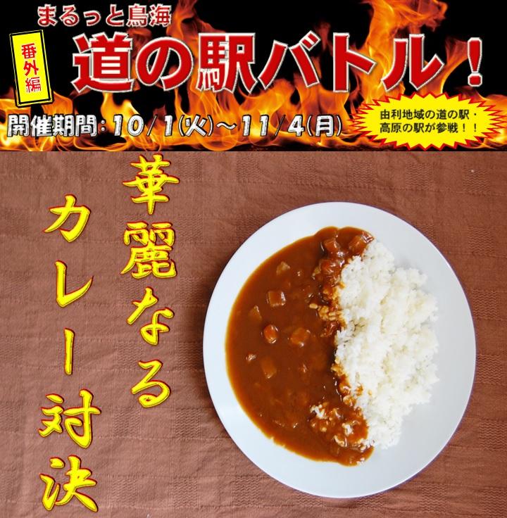 道の駅バトル番外編「華麗なるカレー対決」~ビックニュース~