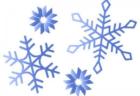 ♪冬のアクティビティ♪