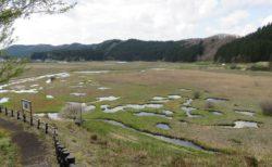 加田喜沼湿原を視察!