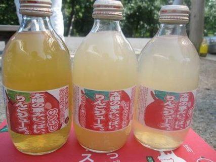 りんご収穫体験(西目)