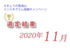 #きょうの鳥海山 結果発表 2020年11月分